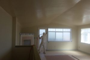 Capitol Hill Seattle - interior painting